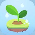 专注植物测试版