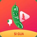 丝瓜视频app