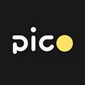 Pico图像标注